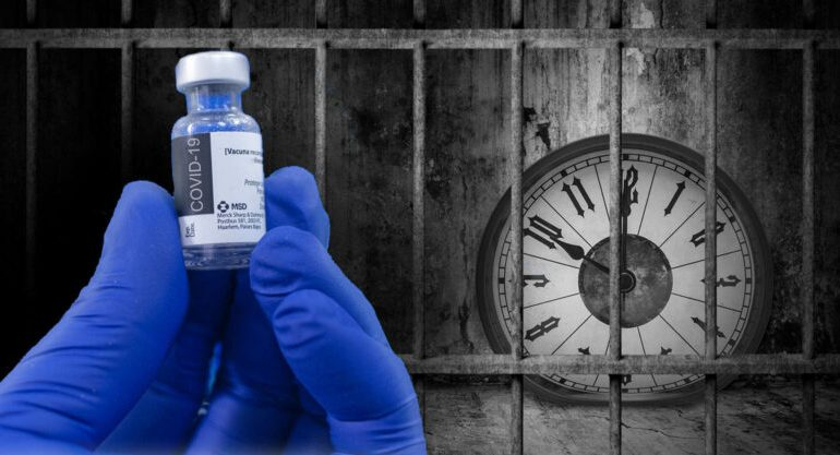 Renewal of marketing authorisations and proof of quality of vaccines (France)