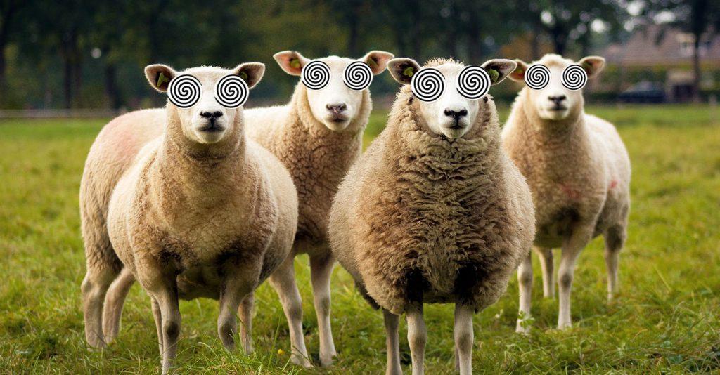 Herd Immunity: Science Or Magic?