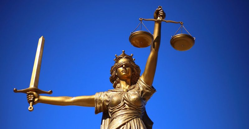 Europäische Bürger klagen vor dem Europäischen Gerichtshof, um neue GVO-Zulassungsverfahren für unwirksam erklären zu lassen, nachdem diese im Eilverfahren durch das Parlament gebracht wurden