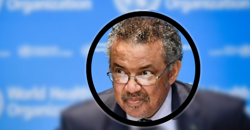 Tedros Adhanom Ghebreyesus: is the WHO led by a terrorist? The go-between of Gates and Chinaengaged in the global leadership battle.